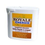 Royale Energie